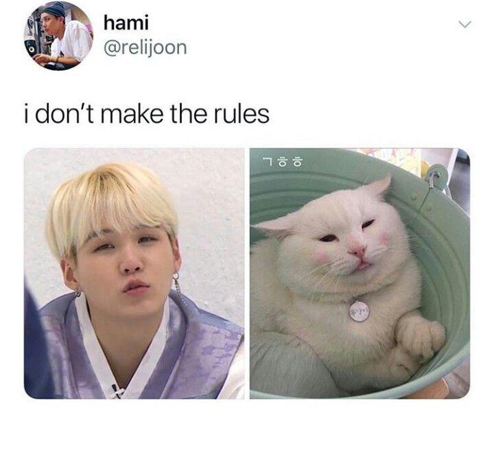 Told Yah That Yoongi Is A Kitten Bts Memes Bts Yoongi Bts Funny