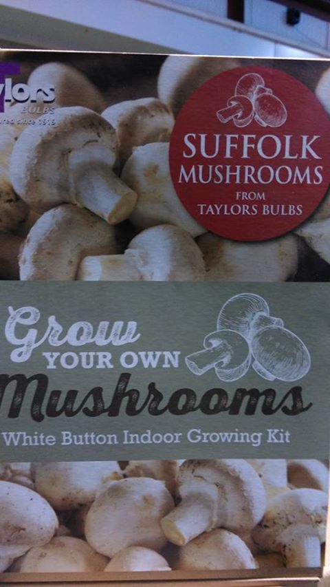Growing your own mushrooms is easy @ Horkans #Castlebar