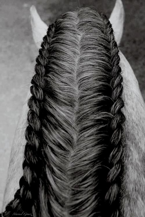 Double mane braid horse, for those extra thick manes! The running braid isn't…