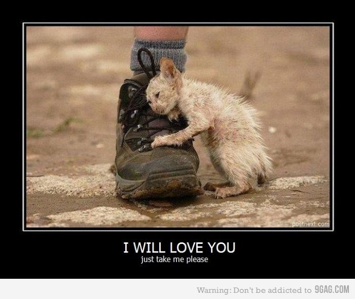 Yes, yes I will take you! :')