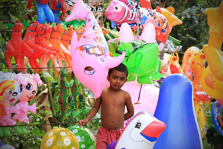plastic zoo somewhere in Sri Lanka