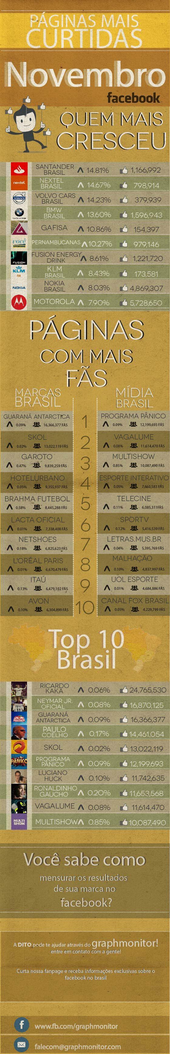#Infografico As páginas mais curtidas no mês de novembro 2013