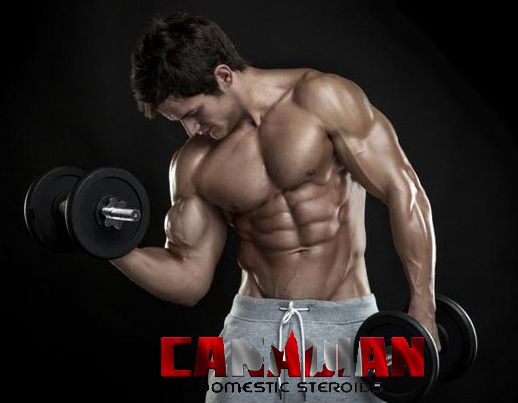 You can use anabolic steroids for losing excess of fat, which is hard to reduce through only exercise. Visit www.canadiandomesticsteroids.net to buy high quality #anabolic #steroids and avail the large sale of stock.  Follow @canadiandomroid