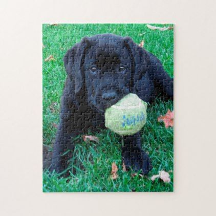 Black Labrador Puppy - Play Ball Jigsaw Puzzle - home gifts ideas decor special unique custom individual customized individualized