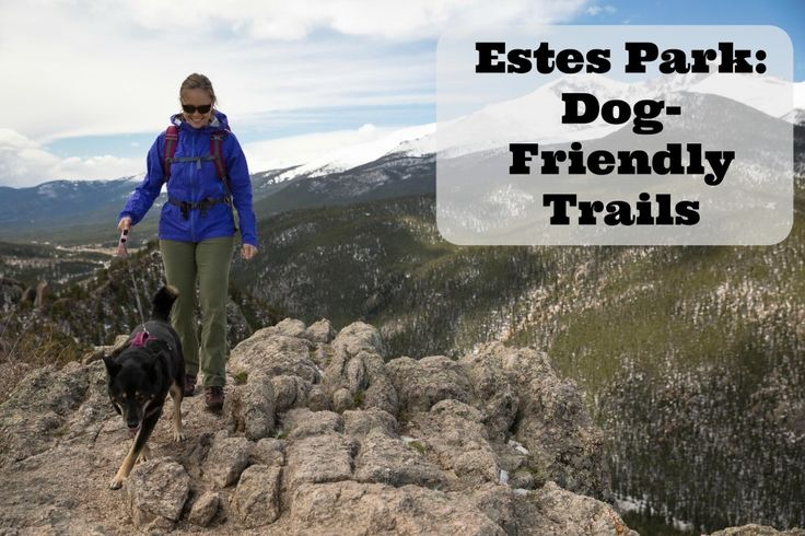 Dog Friendly Places In Colorado Springs