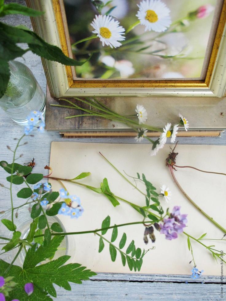 Blomkonst dekoration ikea livet en inredning - Ikea dekoration ...
