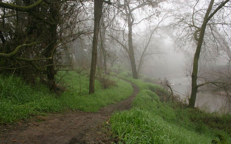 The Dry Creek Running Trail is quite popular, but not necessarily for its scenic views or level of difficulty. Many routine joggers use it (or avoid it) because they believe it to be haunted. Some say the spirit of a teenage boylingers on this trail