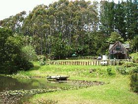Sanctuary Lake Cottage in Warkworth | Bookabach | New Zealand