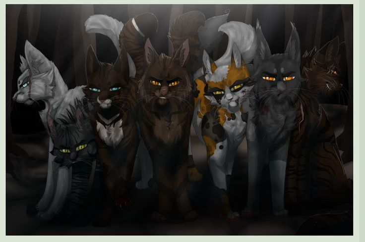 Love this warrior cat pic of the most famous  Darkforest warriors