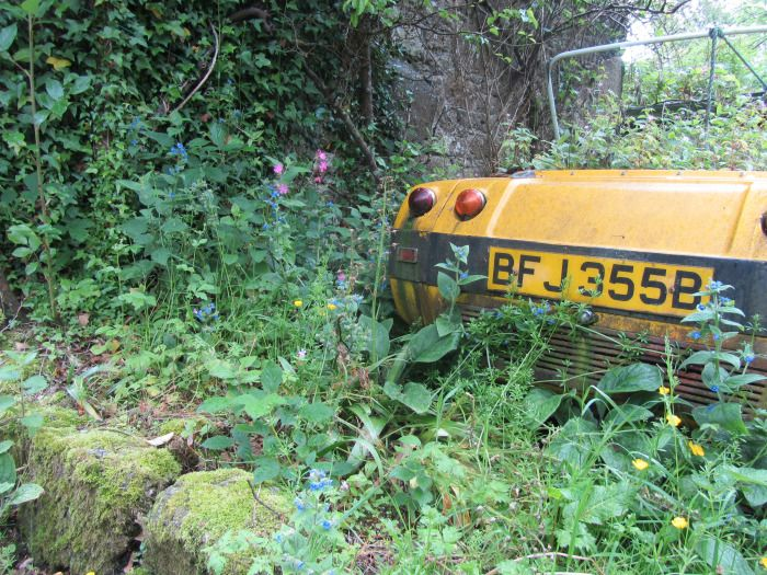 A Secret Garden in Cornwall