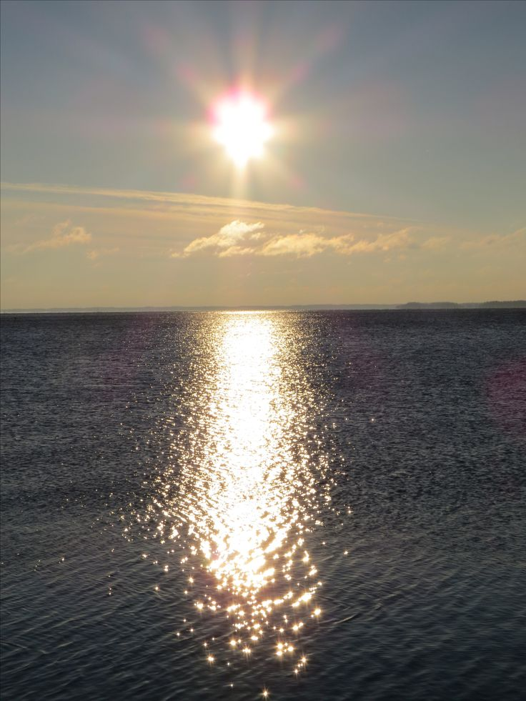 Pure gold, sunset <3