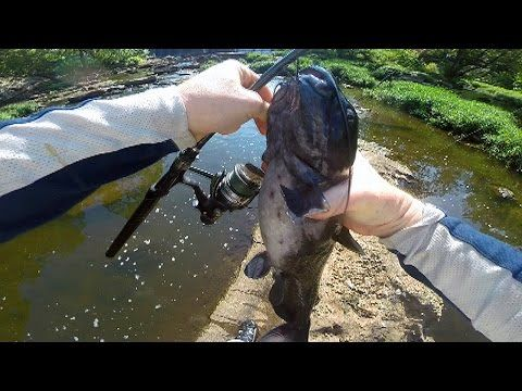 How to catch Catfish in a river--River Catfishing--Bank fishing for Catfish