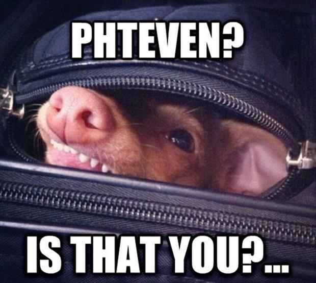 Phteven's my favorite!!!
