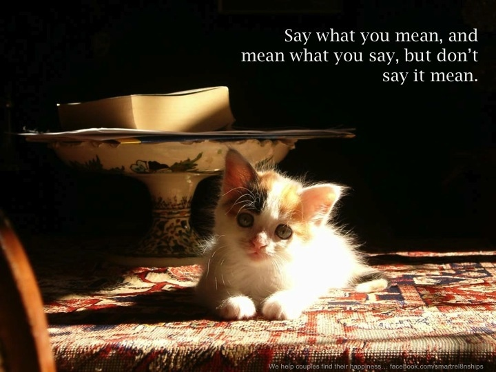 Say what you mean and mean what you say. Cute cats