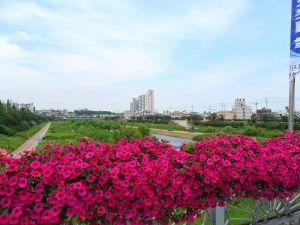 Cheongju, South Korea