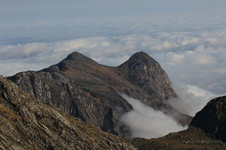 Malawi - Mulanje Mountains - w drodze na Sapitwa Peak    http://www.szczytyafryki.pl    #Malawi #Mulanje #Sapitwa