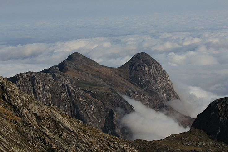 Malawi - Mulanje Mountains - w drodze na Sapitwa Peak || http://www.szczytyafryki.pl || #Malawi #Mulanje #Sapitwa