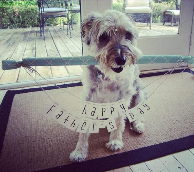 23 Last-Minute Father's Day Ideas!! Can I have a puppy for father's day?