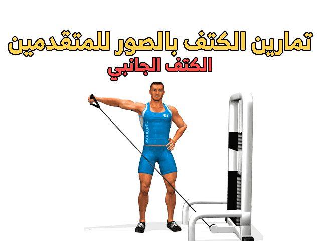 تمرين كتف ضخامه بالصور Shoulder Workout Workout Shoulder