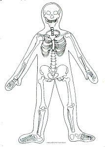 lidské tělo-výtvarka pro1. i 2. stupeň — výtvarné návody a postupy na tvoření