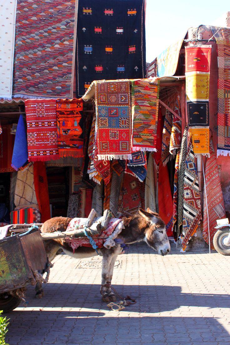 Asino nel Souk di Marrakech tra i tappeti - Marocco