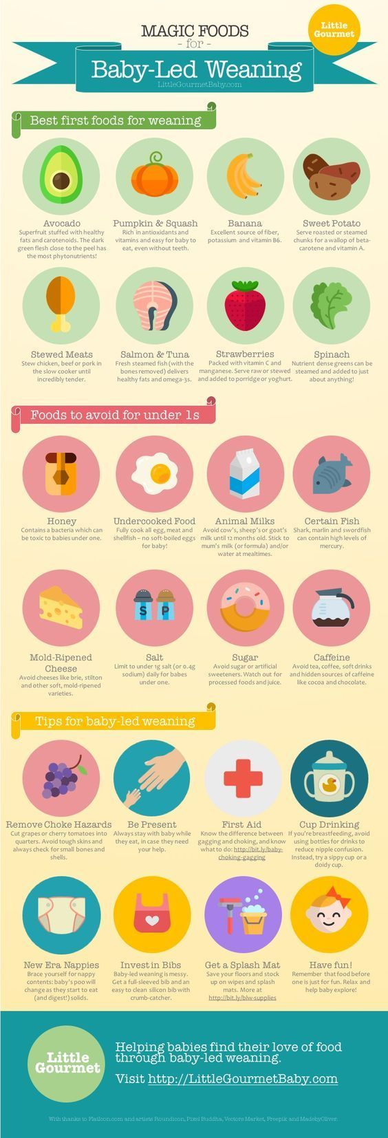 Click to expand! [INFOGRAPHIC: The Magic List of Baby-Led Weaning Foods]