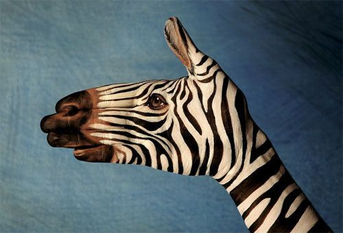 Zebra Hand Design. the coolest ever!