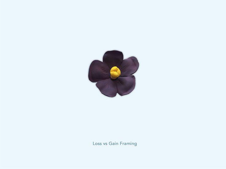 Loss vs Gain Framing - Kaaps viooltje