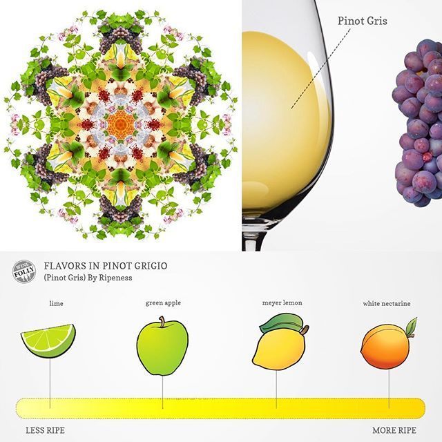 Who doesn't like a #refreshing glass of #pinotgrigio? 🍇This #fruity #wine variety never disappoints! ✨Our #mandala represents all the aromas and flavors 🍋🍑you can find in it! #wineart #winegram #winetime #winegift #winelover #winemandala #mandalagram #mandalas #mandalaart #mandalagift #mandalalovers #fineart #grape #lime #pinotgris #rulandskesede #glassofwine #vino #vinoblanco #whitewine #bielevino Thanks 🙏🏼@winefolly