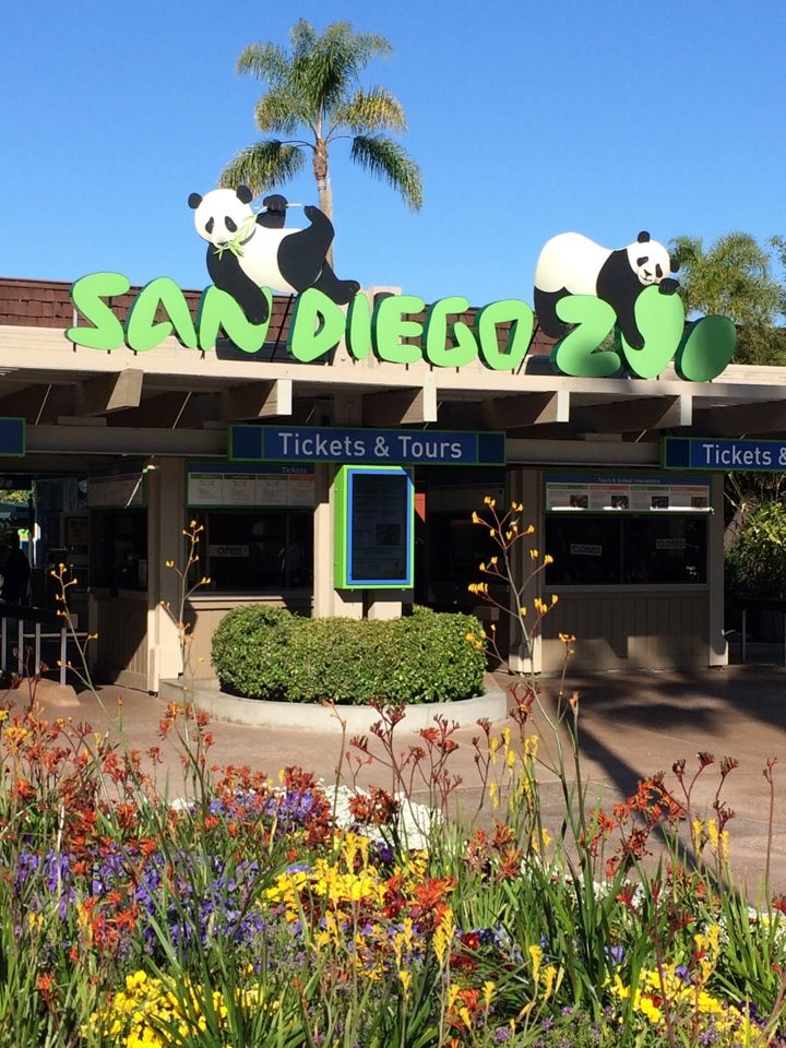 San Diego Zoo. They have pandas. I know this because I've seen anchorman