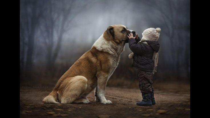 Трогательные картинки, которые порой доводят до слёз