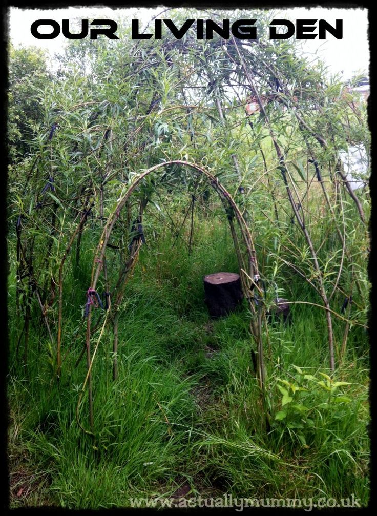 Living Willow Den- creating the forest where you have very little trees.