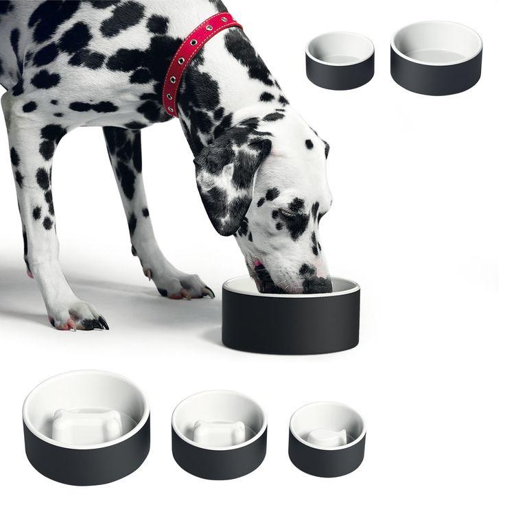 Keramik-Näpfe mit Kühl-Effekt für Hunde & Katzen