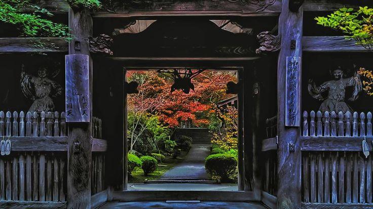 松尾寺その2 山門からの額縁効果を狙ってみましたよ(^^) #スマホカメラ #smartphonecamera #日本 #japan #大阪 #osaka #秋 #autumn #もみじ #maple #紅葉 #autumnleaves #松尾寺 #寺 #temple #beautiful #ptk_japan #icu_japan