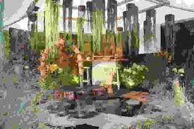 Résultats de recherche d'images pour «le stand végétal»