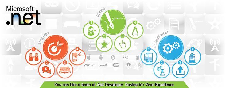 Asp DoT Net Developer