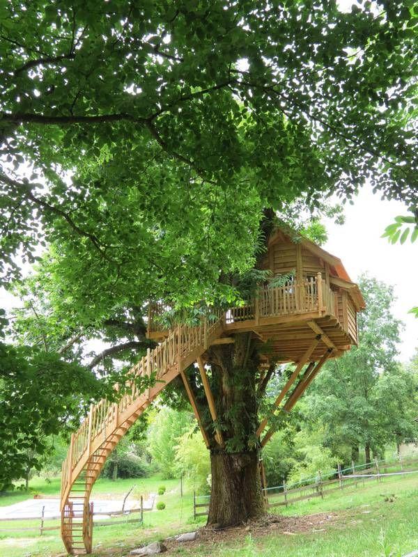 La Cabane du chataîgnier - Cabane dans les arbres