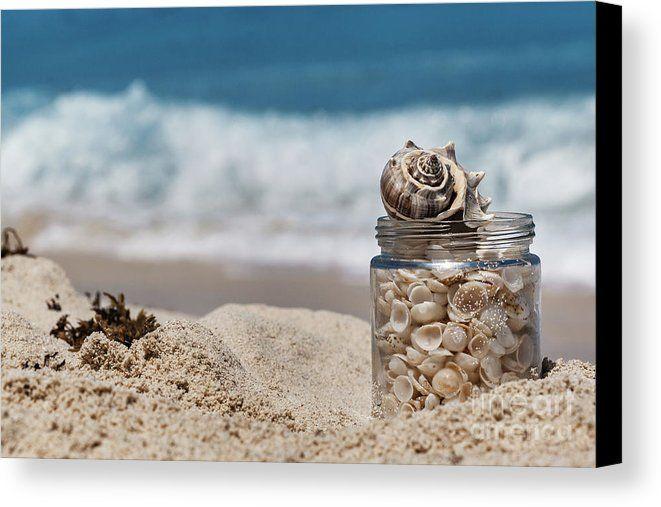 Where Wishes Go by Evgeniya Lystsova   Shells in a glass jar on the sand beach in Cancun, tropical landscape #EvgeniyaLystsovaFineArtPhotography #Landscape #SeaScape #Beach #Caribbean #Shells #Ocean #Sea #Travel #Photography #Cancun #FineArtPrints #FineArt #WallArt #HomeDecor #ArtForHome #InteriorDesign #Canvas