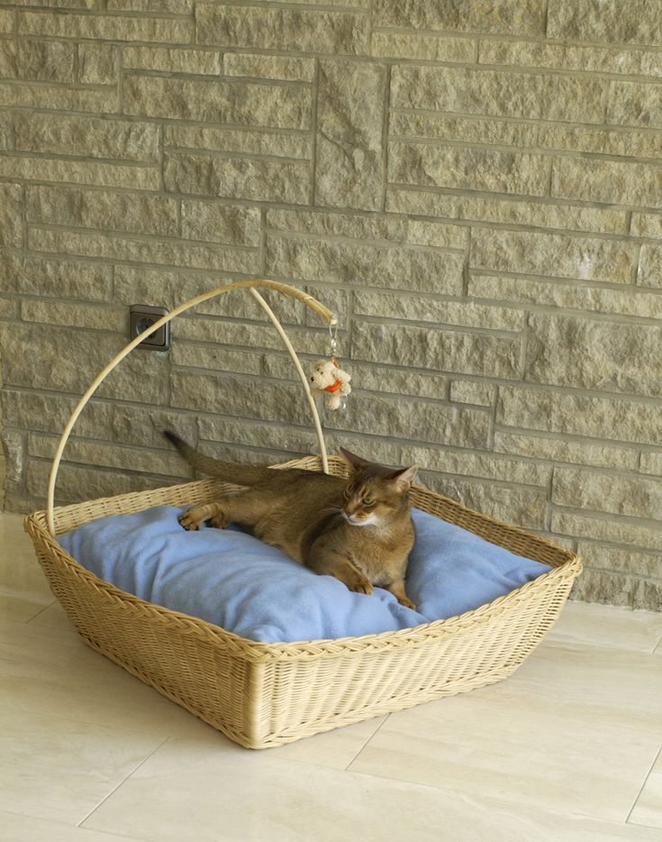 1019 best cat friendly apartment images on pinterest for Chaise lounge cat scratcher