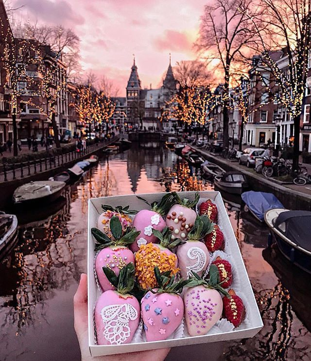 Amsterdam E Realmente Incrivel Amsterdam Travel Places To Travel Amsterdam