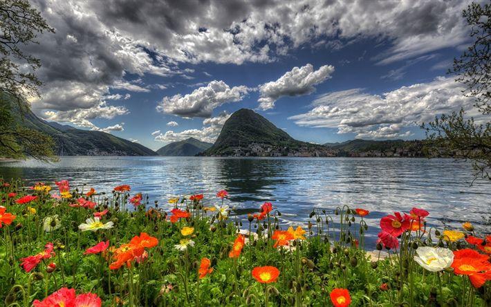 Herunterladen hintergrundbild schweiz, mohn, berge, see, küste, hdr, sommer