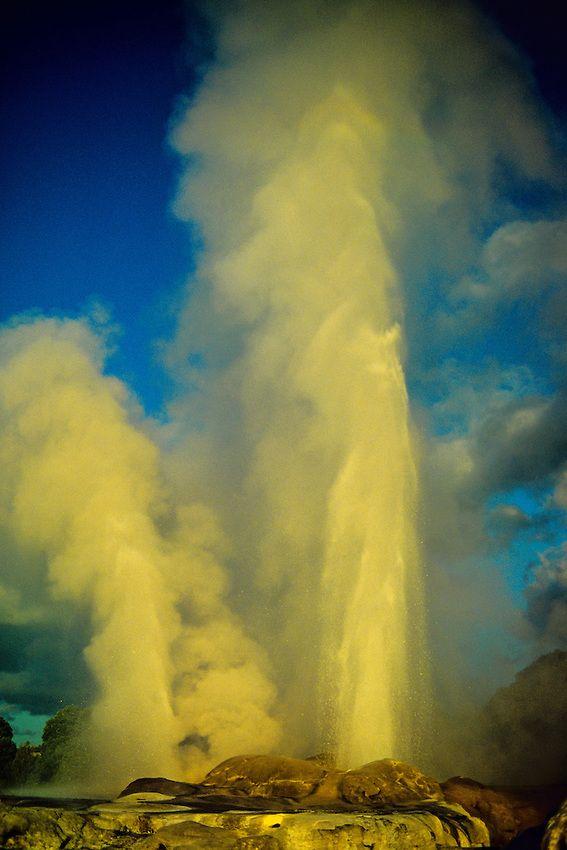 Geysers in Whakarewarewa Thermal Reserve, Rotorua, New Zealand