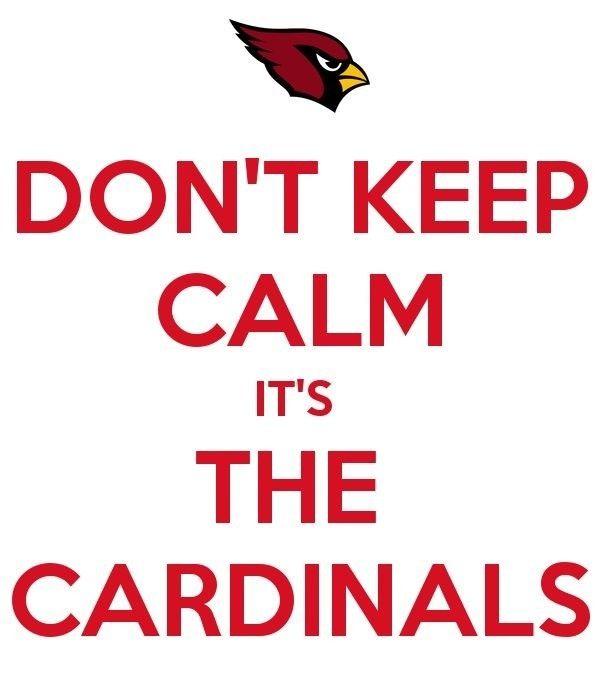 Pin By Linda Smart Card Making Rooki On Arizona Cardinals Arizona Cardinals Football Cardinals Nfl Cardinals Football