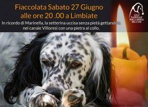 27/6 #fiaccolata per ricordare Marinella #Limbiate (MB) - #animalicidio