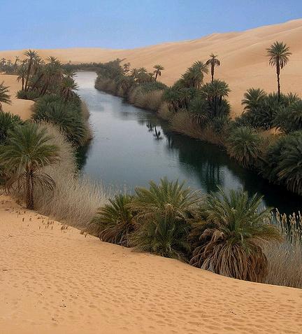 Oasis in the desert…