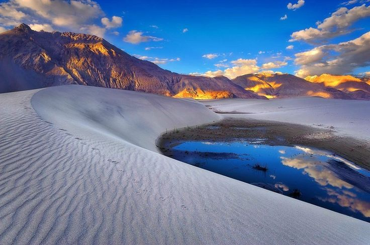 Take a stroll through the #sand-dunes of #Hunder in #Nubra Valley and embark on a camel-ride through #snow-capped mountains. goExplore the Ultimate #Ladakh https://goo.gl/TGBLZW  #SummerVacations #naturelovers #Summer2015