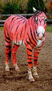 Horse Fancy Dress Ideas: Tiger