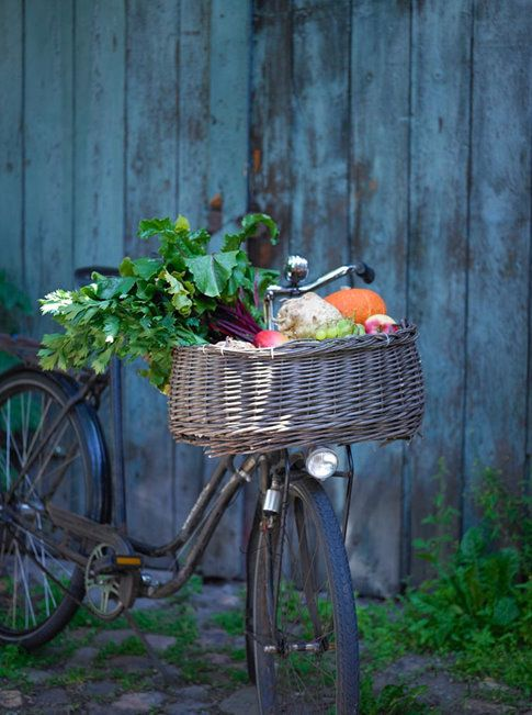 Love this...could it be an old Grocer's bike? Do i pin it for the Bike...or the basket? Both lovely