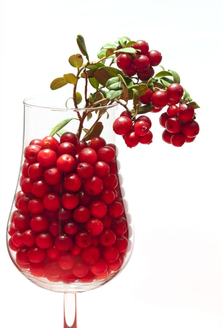 We may have a new superfood on our hands: #Lingonberries can halt weight gain, lower blood sugar #DiabetesInfo