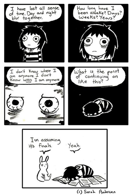 Dealing with finals exams…this is quite accurate